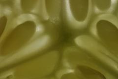 Die heilige Symmetrie der Gurke