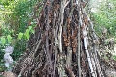 Holzpyramide mit Käferkeller